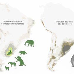 megamamíferos incrementaron su existencia hace aproximadamente unos 17.500 años atrás