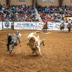 Un jinete es arrojado de su toro en el San Angelo Stock Show and Rodeo en San Angelo, Texas. - La primera noche del rodeo vio a una multitud agotada, el primer evento de rodeo que se llevó a cabo sin restricciones en San Angelo desde el comienzo de la pandemia. | Foto:Sergio Flores / AFP