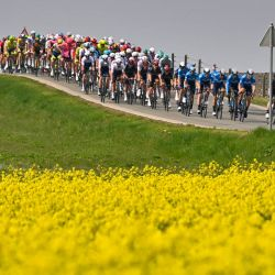 Bélgica, Huy: La manada participa en la 85a edición de la carrera ciclista masculina Fleche Wallonne, una carrera de un día de 193,6 kilómetros de Charleroi a Huy.   Foto:Eric Lalmand / BELGA / DPA