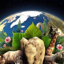 Restaurar nuestros ecosistemas dañados contribuirá a terminar con la pobreza, a combatir el cambio climático
