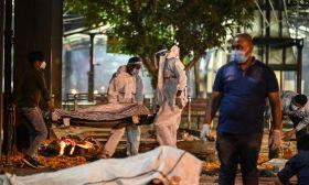 india victim covid-19