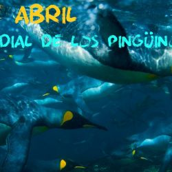 La fecha fue propuesta por la Global Penguin Society (GPS)