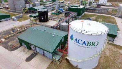 EN RIESGO. Con nuevo proyecto de ley y un debate que no avanza, las inversiones de bioetanol de maíz corren peligro.