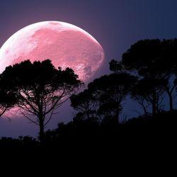 Es la Luna llena más grande y luminosa que se registrará en 2021.nó
