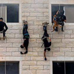 Los miembros palestinos de las fuerzas de seguridad de Hamas hacen rappel a lo largo de la pared de un edificio mientras muestran sus habilidades durante una ceremonia de graduación de la policía en la ciudad de Gaza. | Foto:Mahmud Hams / AFP