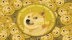 Dogecoin 2022104027
