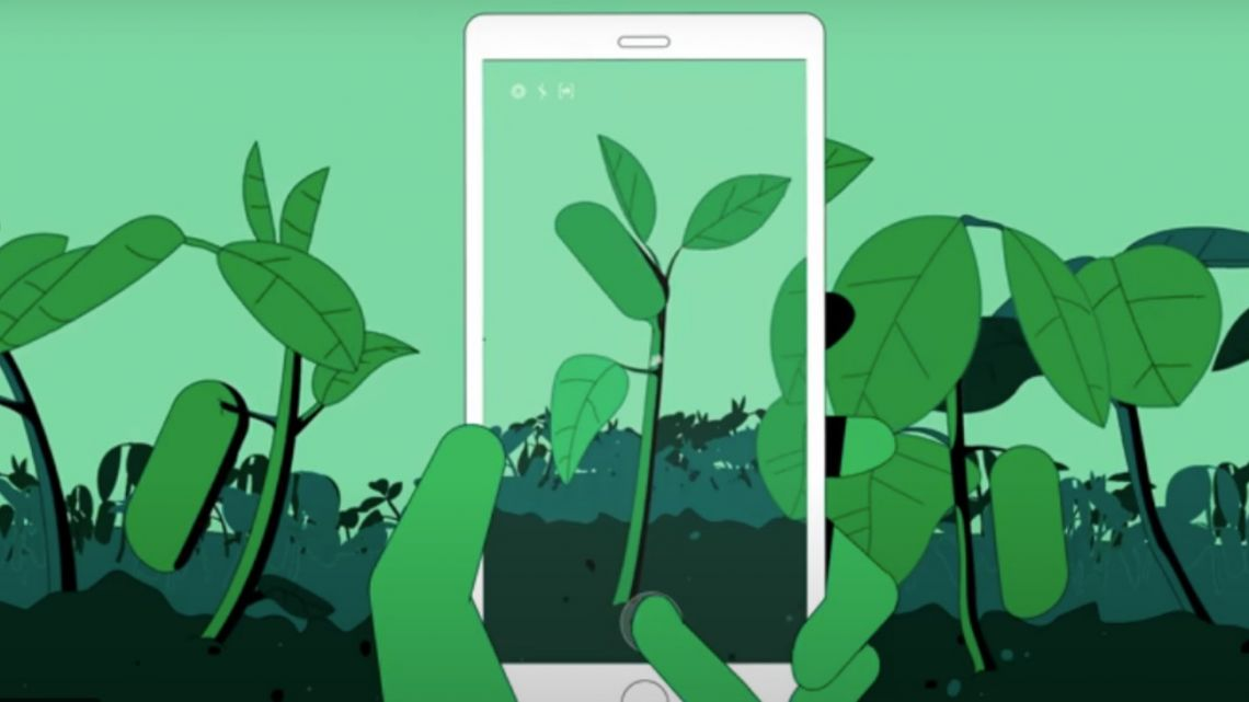 A screenshot from a video promoting the SIMA Monitoreo de Cultivos app.