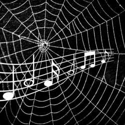 Los especialistas utilizaron imágenes láser para crear un mapa 3D de redes elaboradas por arañas tropicales