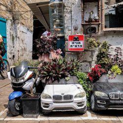 Un adolescente pasa por delante de vehículos de juguete transformados en macizos de flores en la ciudad costera de Acre, en el norte de Israel.   Foto:Emmanuel Dunand / AFP