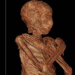 Una visualización en 3D del cuerpo mostró claramente cabello largo y rizado y senos momificados