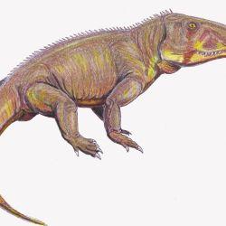 """Esta nueva y milenaria especie de reptil fue bautizada """"Bharitalasuchus tapani""""."""