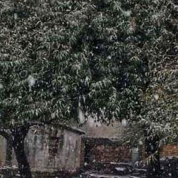 Las casas se cubrieron totalmente de blanco por la intensa nevada.