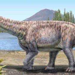 El titanosaurio hallado habitó lo que hoy se conoce como la región de Atacama durante la parte final del periodo Cretácico, entre 80 a 66 millones de años atrás.