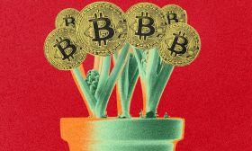 bitcoin crypto art