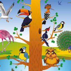 De las 9.700 especies de aves conocidas que habitan en el mundo más del 33% se encuentran en América del Su