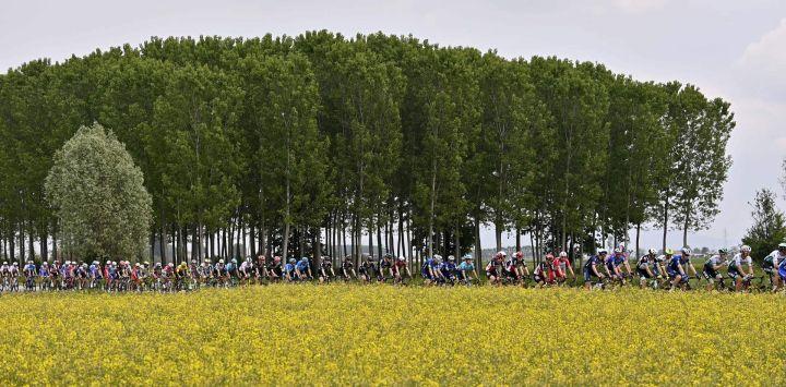 Italia, Novara: ciclistas viajan durante la segunda etapa de la 104a edición de la carrera ciclista Giro d'Italia, una etapa plana de 179 km desde Stupinigi a Novara.