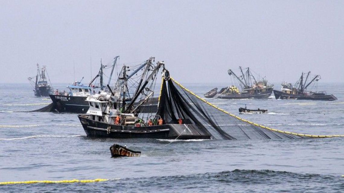 Fishing boats on the Argentine sea. The World Trade Organization is working towards banning subsidies that contribute to over-fishing.