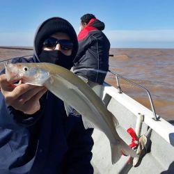 Dónde ir a pescar el fin de semana 17 de mayo de 2021