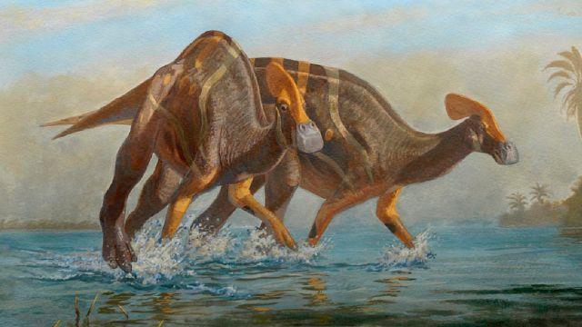 Especie Dinosaurio México