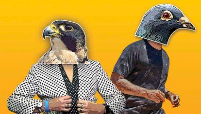 Picotazos. Bullrich y Larreta en pugna por el armado de listas. Por momentos, los halcones opositores y oficialistas coinciden más entre ellos que con las palomas de sus espacios. Con las palomas pasa lo mismo.