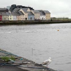 Las coloridas casas del barrio de Claddagh contrastan en Galway con el cielo gris que predomina incluso en verano. Foto: Alexandra Stahl/dpa