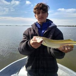 Tras las restricciones impuesta por la cuarentena, repasamos lo que dejó la semana de pesca.