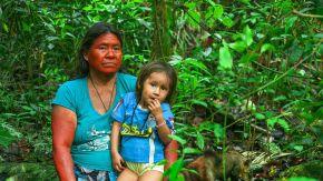 protección de los defensores de los derechos humanos del medio ambiente 20210521