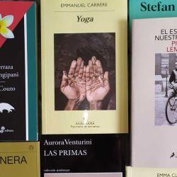 Libros | Foto:Cedoc