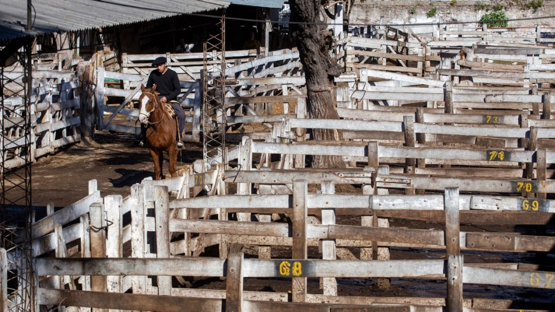 The Liniers Market lies quiet as a beef-sale ban by exporters begins.
