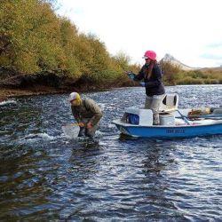 En esta ocasión salimos al río Chimehuin con la operación de Patagonia River Guides.