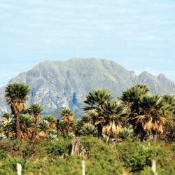 Los volcanes de Pocho se ubican en el extremo noroeste de la provincia de Córdoba.