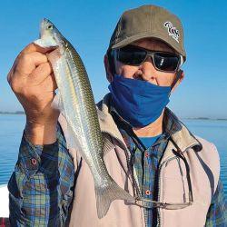 En otoño, el pejerrey come firme, lleva decididamente las boyas y facilita la tarea del pescador.