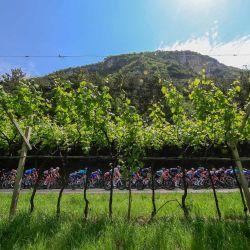 Los cilcistas recorren el campo al inicio de la 18a etapa de la carrera ciclista Giro d'Italia 2021, 231 km entre Rovereto y Stradella.   Foto:Luca Bettini / AFP