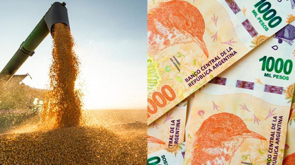 Inversión en granos 20210528