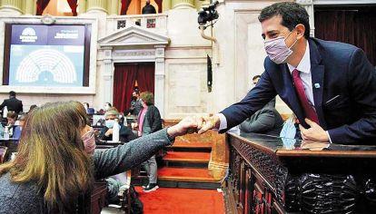 Visita. El ministro De Pedro en la sesión en la que se aprobó la postergación de las elecciones.