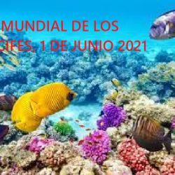 El planeta podría perder los arrecifes de coral vivos en el mundo para el año 2050.