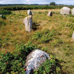 El estudio también demostró que el sitio está más relacionado con los entierros de barcos vikingos suecos que con los daneses,