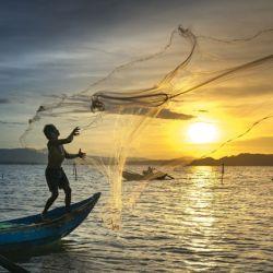 la pesca ilegal, no declarada y no reglamentada es responsable de la pérdida de 11 a 26 millones de toneladas anuales de pescado.