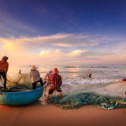 El mar y sus recursos naturales, entre ellos los peces, siempre constituyeron una fuente vital de alimentación para el desarrollo de la humanidad.