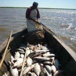 La decisión surgió tras una reunión del Consejo Provincial Pesquero de la que participaron todos los actores vinculados al sector.