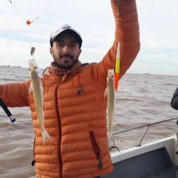 Temporada de pejes en La Plata