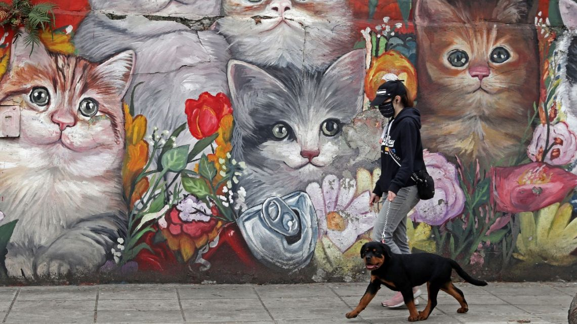 A woman wearing a protective face mask walks her dog in Villa Crespo neighbourhood in Buenos Aires, on June 5, 2021.
