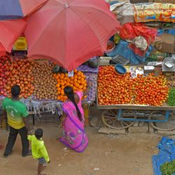 La gente compra frutas y verduras a los vendedores ambulantes mientras las autoridades estatales levantan las restricciones de viaje y suavizan las normas de bloqueo que se impusieron anteriormente para frenar la propagación del coronavirus Covid-19 en Bangalore.   Foto:Manjunath Kiran / AFP