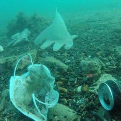 250 millones de toneladas de desechos plásticos terminarán en los mares.