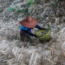 La gran mayoría de los recicladores trabaja bajo pésimas condiciones de trabajo.