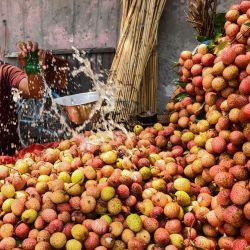 Un vendedor salpica agua sobre los lichis mientras espera a los clientes en Amritsa.   Foto:Narinder Nanu / AFP