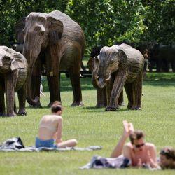 Unas personas se relajan cerca de las esculturas de tamaño natural de una manada de elefantes asiáticos instaladas por la Elephant Family y The Real Elephant Collective para ayudar a educar al público sobre los elefantes y las formas en que los humanos pueden proteger mejor la biodiversidad del planeta, en Green Park, en el centro de Londres. | Foto:Tolga Akmen / AFP
