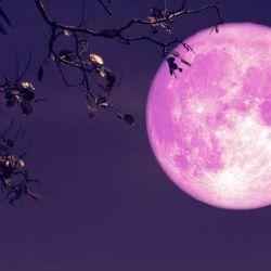 La Superluna podrá verse en su máximo esplendor entre las 16 y las 16:20 horas de la Argentina.
