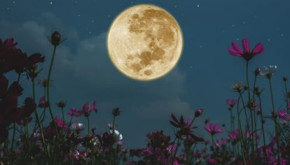 0624_superluna de fresa