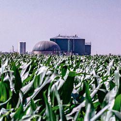 Biocombustibles | Foto:Cedoc
